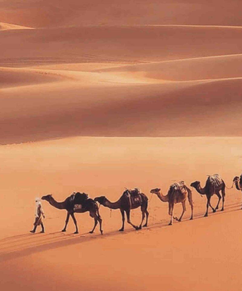 2-day Sahara desert tour
