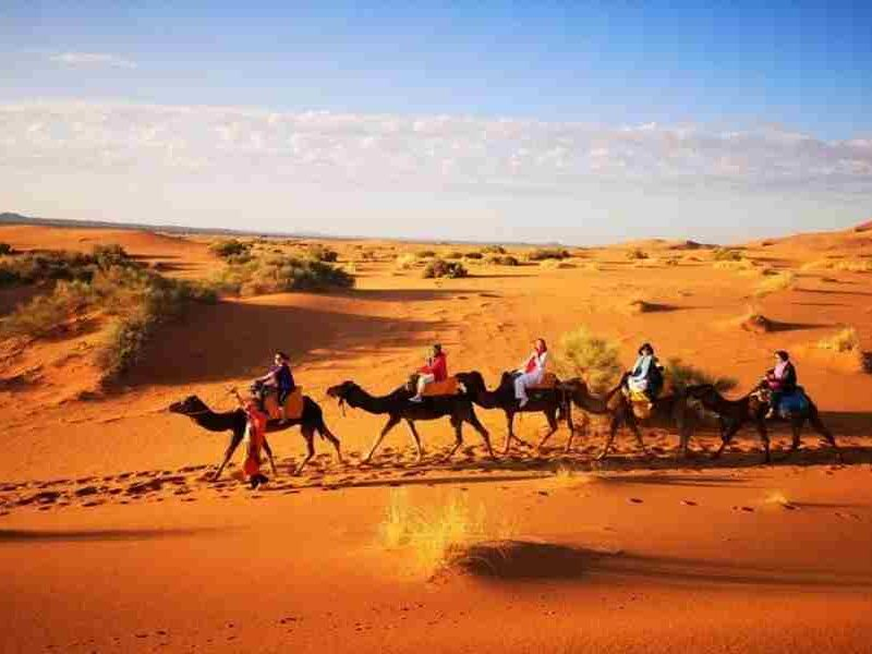 11 Days Morocco Discovery Tour from Casablanca