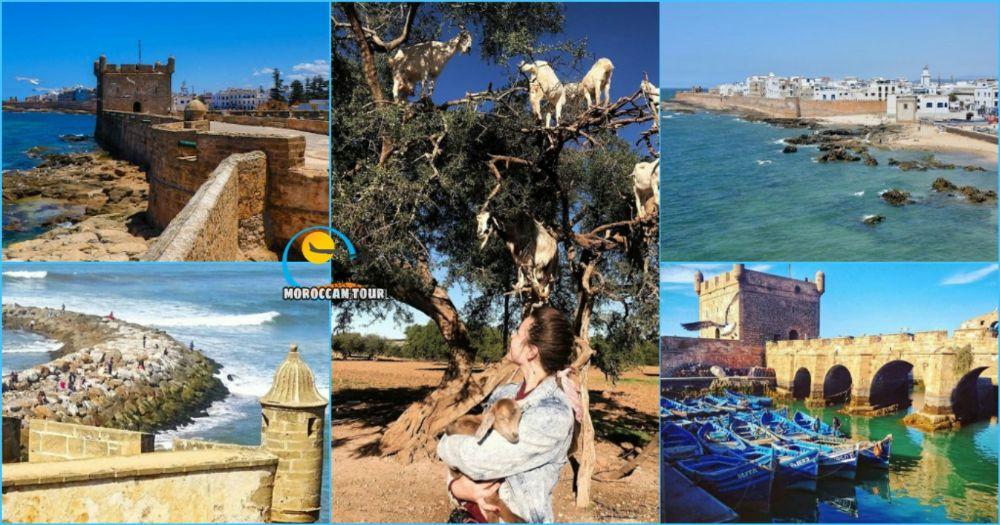 Excursão de um dia a Essaouira